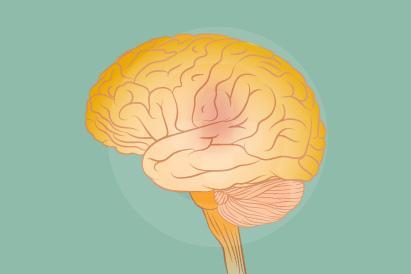 amnesia atau hilang ingatan dapat diobati berdasarkan penyebabnya