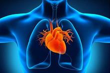 Sebagian jenis penyakit jantung bisa dicegah dengan memperbaiki gaya hidup