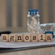 Agnosia adalah kelainan saraf yang bisa menyulitkan seseorang dalam mengenali sesuatu