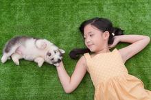 Anak dengan kecerdasan naturalis selalu tertarik dengan makhluk hidup di sekitar