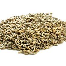 Salah satu manfaat gandum hitam adalah mengontrol berat badan