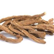 Angelica sinensis atau dong quai adalah tanaman herbal yang berasal dari China, Korea, dan Jepang