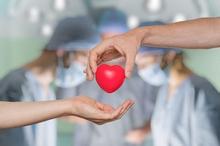 Operasi transplantasi organ bisa dilakukan untuk mengganti ginjal, hati, jantung, dan organ tubuh lainnya