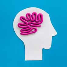 ukuran volume otak manusia