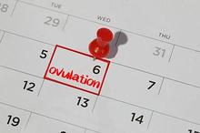 Masa subur setelah haid tidak selalu datang di waktu yang sama setiap bulan