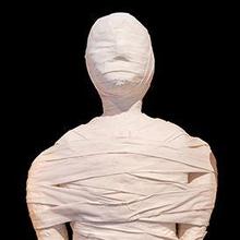 Proses mumifikasi adalah cara untuk mengawetkan jenazah melalui pembalsaman.