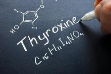 Hormon tiroksin mengatur berbagai fungsi di tubuh