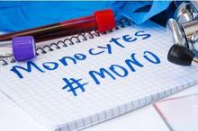 """Jika kadar monosit tinggi, bisa jadi tubuh Anda sedang """"berperang"""" melawan penyakit tertentu."""