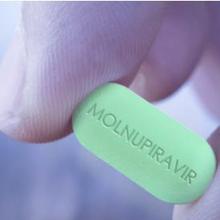 Molnupiravir obat untuk covid-19