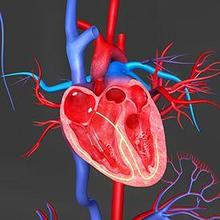 Tetralogy of Fallot (TOF) adalah penyakit jantung bawaan yang tergolong langka