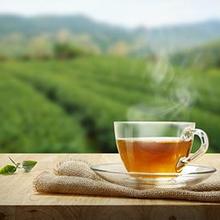 Manfaat minum teh tanpa gula dapat meningkatkan mood serta menjaga Anda tetap awet muda