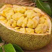 Buah nangka mengandung vitamin yang cukup beragam, terutama vitamin B6 dan vitamin C