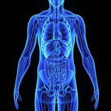 Trauma abdomen terjadi akibat cedera organ dalam di bagian perut