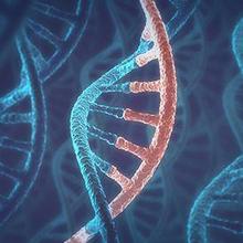 Perbedaan DNA dan RNA bisa memengaruhi pengobatan pada tiap individu