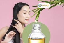 Minyak rosemary bermanfaat menjaga kesehatan rambut