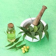 Obat herbal TBC bisa didapat dari kandungan mimba