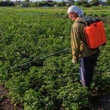 Pestisida organik berasal dari sumber-sumber alami, seperti mineral dan tumbuhan