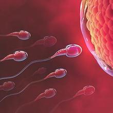 cara membedakan sperma subur dan tidak