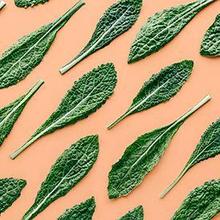 Alergi sayur kale
