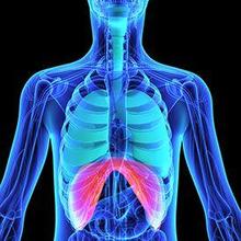 Trauma thorax adalah cedera yang biasanya terjadi akibat hantaman benda tumpul ke dada