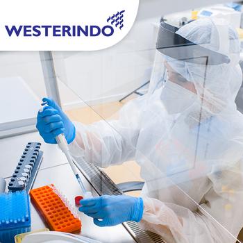 Swab PCR Test COVID-19 (Hasil 1 Hari) - Laboratorium Klinik Westerindo