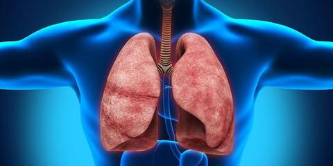 Hati Hati Ini Bahaya Infeksi Paru Paru Akibat Merokok