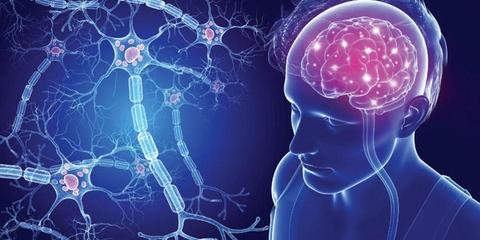 Kenali Hubungan Bakteri Usus dengan Penyakit Multiple Sclerosis