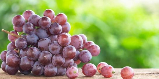 Manfaat anggur merah dapat menyehatkan otak, kulit, dan menurunkan berat badan
