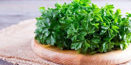 Manfaat peterseli alias parsley untuk kesehatan ternyata sangat banyak.