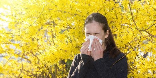 Obat alergi alami tidak bisa menggantikan peran pengobatan medis.