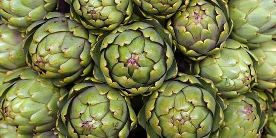 Artichoke adalah tanaman asli Mediterania yang sangat bernutrisi