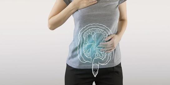 Celiac disease menyerang usus halus