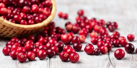 Manfaat buah cranberry melimpah sehingga dijuluki makanan super