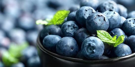 Manfaat blueberry sangat baik untuk tubuh
