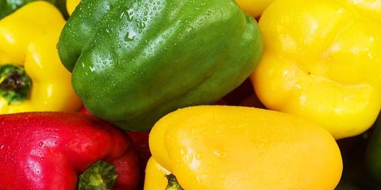 Manfaat paprika dapat mencegah anemia