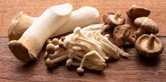 Jenis jamur yang bisa dimakan sangatlah beragam, termasuk jamur enoki dan jamur shittake
