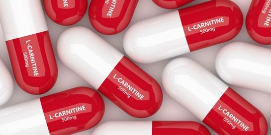 L-carnitine adalah asam amino yang dibutuhkan tubuh.