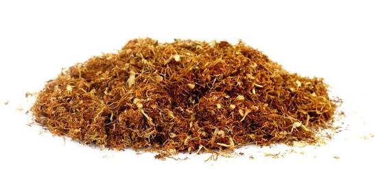 Manfaat tembakau salah satunya adalah menjadi sumber daya protein nabati yang menjanjikan