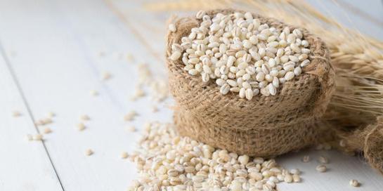 Barley adalah makanan bernutrisi yang punya banyak manfaat bagi tubuh