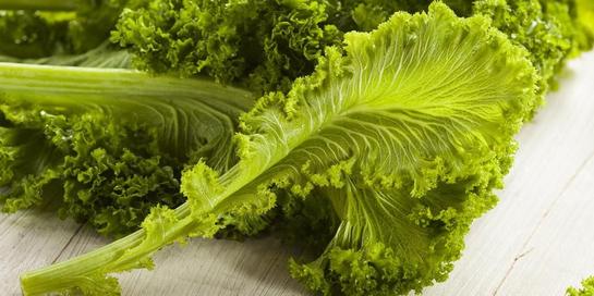 Manfaat sawi hijau akan lebih optimal bila sayur ini diolah ketika masih segar