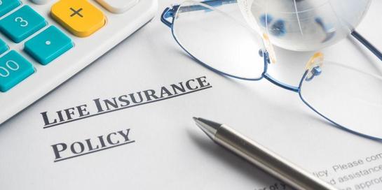 Asuransi jiwa memiliki banyak jenis yang bisa dipilih