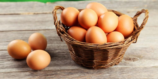Kandungan gizi telur begitu beragam dan sehat untuk tubuh