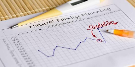 Fungsi pengukuran suhu basal adalah untuk memastikan bila ovulasi sudah terjadi