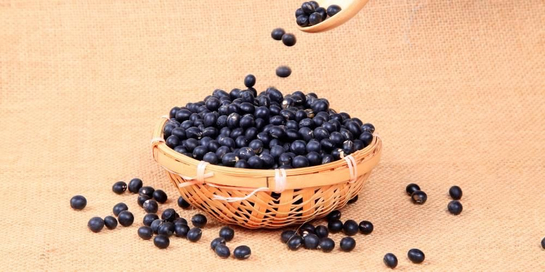 Kacang hitam mengandung protein dan serat yang tinggi