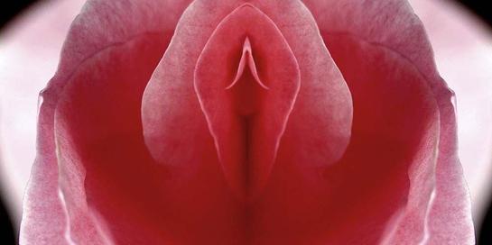 Warna vagina tiap wanita berbeda-beda