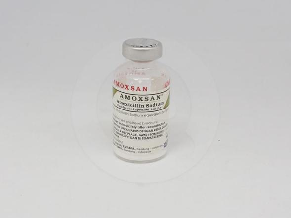 Amoxsan bubuk injeksi untuk pengobatan infeksi saluran nafas bawah, tifoid, paratifoid, tifoid carrier, gonorhea, infeksi saluran kemih tanpa komplikasi, meningitis, sifilis, infeksi saluran nafas bawah kambuhan, abses gigi dan otitis media.