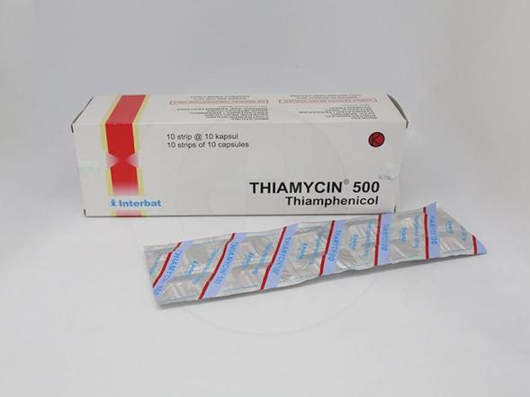 Thiamycin kapsul 500 mg untuk pengobatan infeksi yang disebabkan oleh salmonella s, H. influenzae terutama infeksi meningeal.