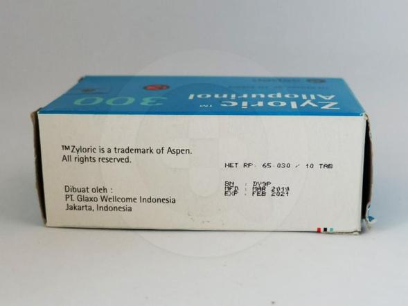 Zyloric tablet 300 mg adalah obat untuk mengurangi pembentukan asam urat.