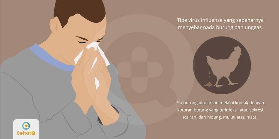 Virus H5N1 yang tersebar pada hewan unggas menjadi penyebab dari penyakit flu burung