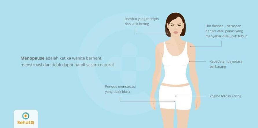 Menopause adalah tanda penuaan pada wanita dimana ovarium berhenti memproduksi estrogen